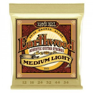 Ernie Ball 2003 Earthwood - Medium Light