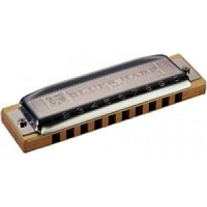 Hohner Blues Harp - D