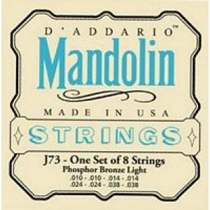 Daddario EJ73 Mandolin Phosphor Bronze Light 10-38