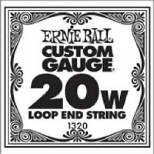 Ernie Ball Loopend 24W Nickel Wound Single String