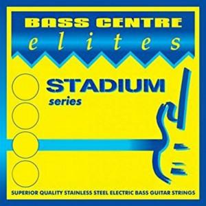 Elites SBE45-130 Stadium 5-String Stainless Steel Long Scale Bass Set