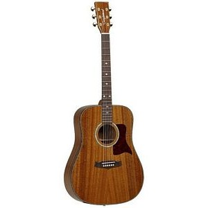 Tanglewood TW15 ASM Dreadnought - Natural