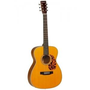 Tanglewood TW40 O AN E Sundance Delta Historic Electro Acoustic Inc. Hardcase