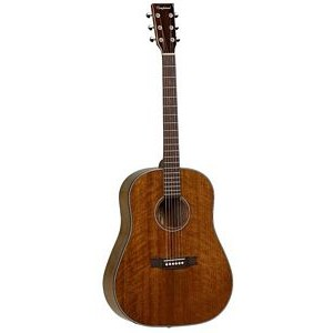Tanglewood TW40 SD D Dreadnought
